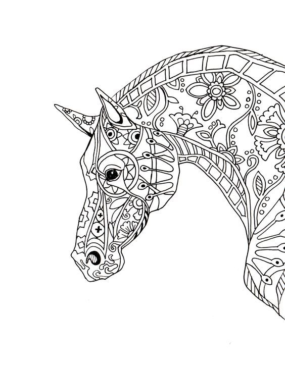 564x729 Coloring Pages Horse Adult Coloring