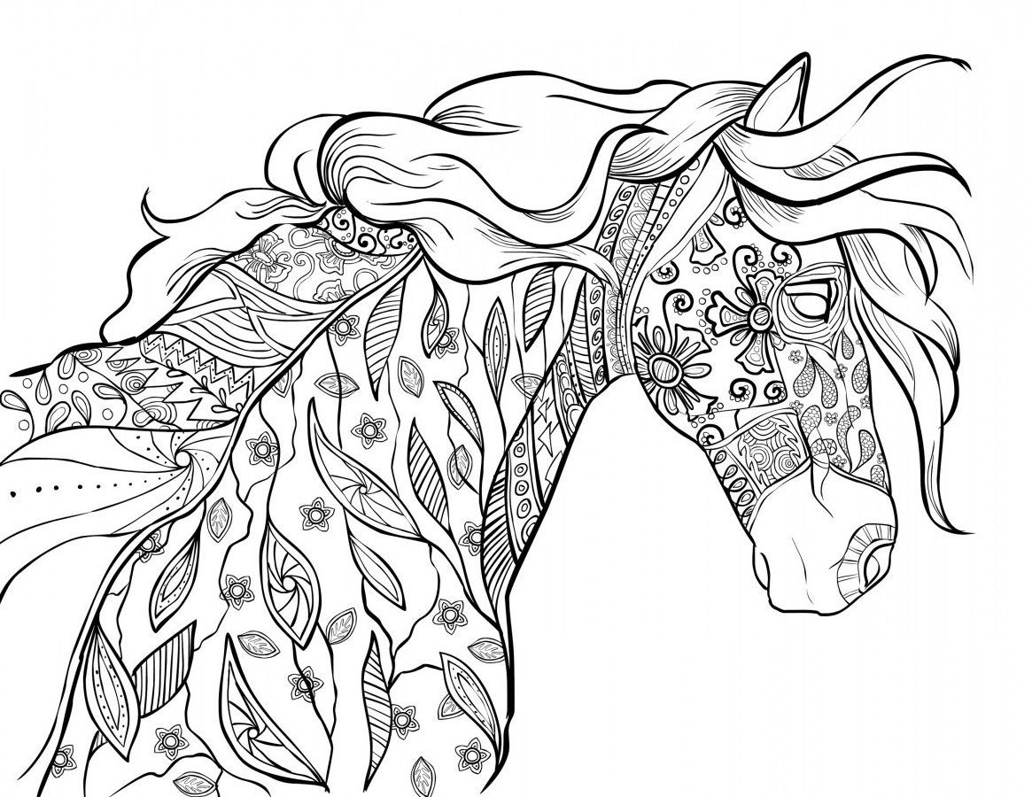 1165x900 The Amazing World Of Horses Adult Coloring Book I Cindy Elsharouni