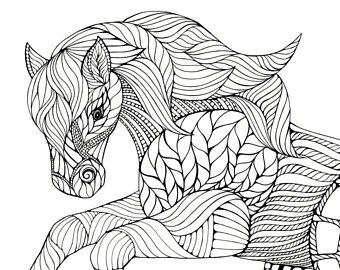 340x270 Bison Buffalo Animal Artwork Coloring Nursery Design Children