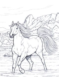 236x304 Coloring Book Horse Clip Art Hand Drawn Original Zentangle