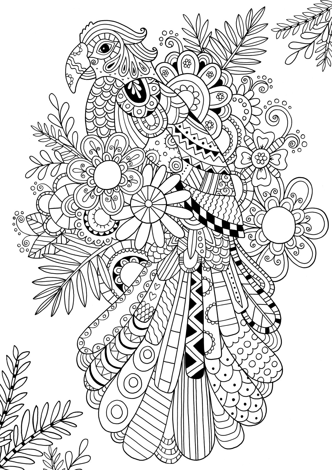 1131x1600 How To Draw Zentangle Patterns