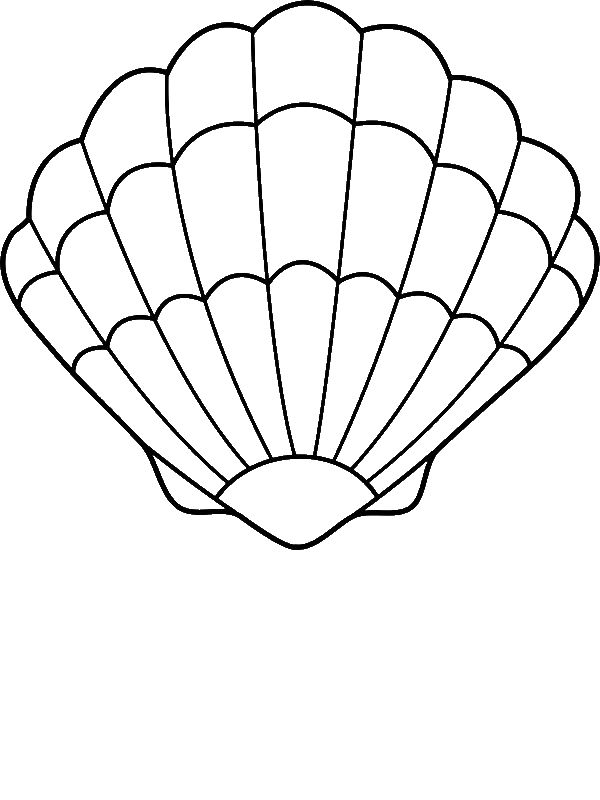 600x800 A Lovely Zigzag Scallop Seashell Drawing Coloring Page