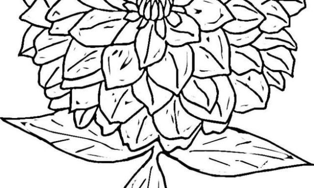 627x376 Coloring Pages Flowers, Printable For Kids Adults, Free To Download