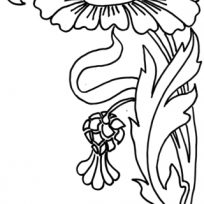 204x204 Free Download Zinnia Coloring Pages