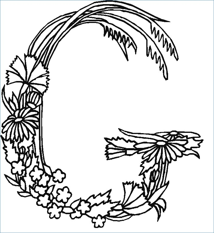 727x791 Letter Z For Zinnia Flower Fairy Coloring Page