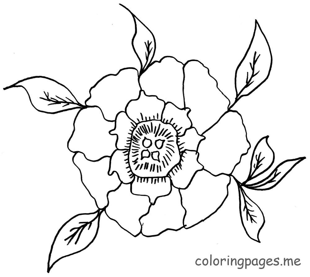 1000x895 Peony Coloring Pages Art Journal Page Ready