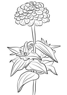 236x334 Rose With Thorns Coloring Page Roses Category Select