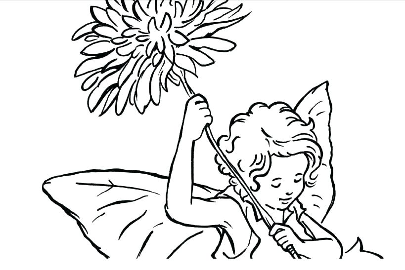 819x547 Coloring Pages Online Flowers Flower Fairy Zinnia Page Unique
