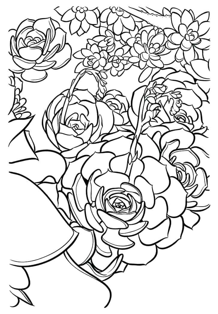 727x1047 Zodiac Coloring Pages Zodiac Signs Coloring Sheets Zodiac Coloring