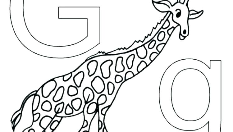 750x425 Wildlife Coloring Pages Wildlife Coloring Pages Alphabet Animals