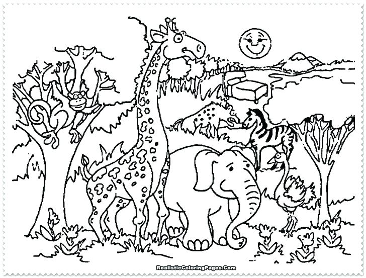 Zoo Coloring Pages at GetDrawings.com | Free for personal ...
