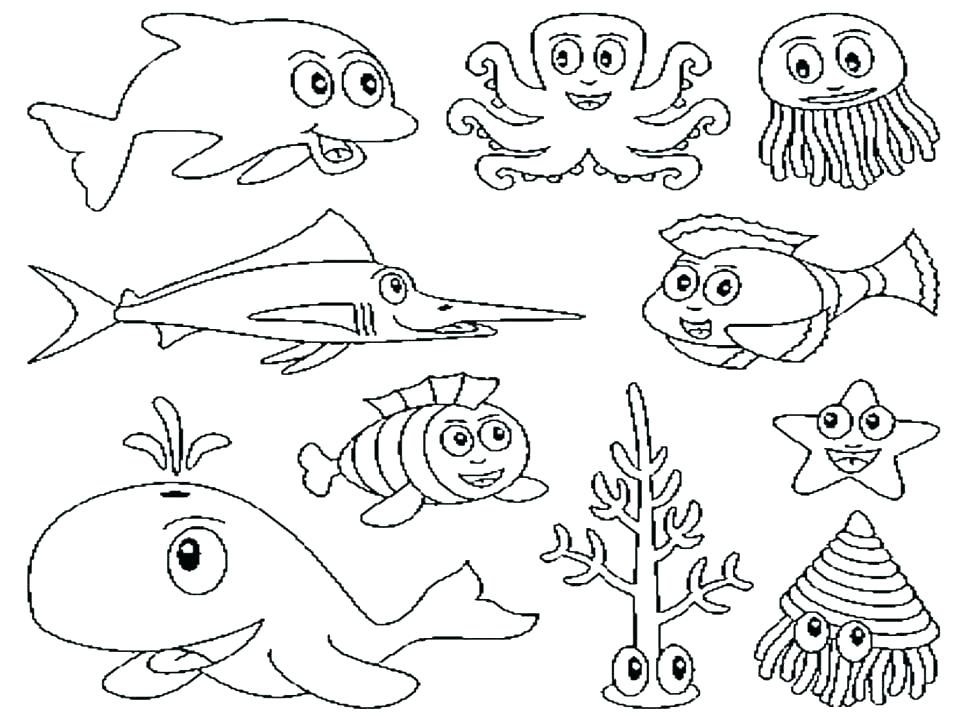 970x728 Zoo Coloring Book Zoo Animal Coloring Pages For Animals Book Zoo