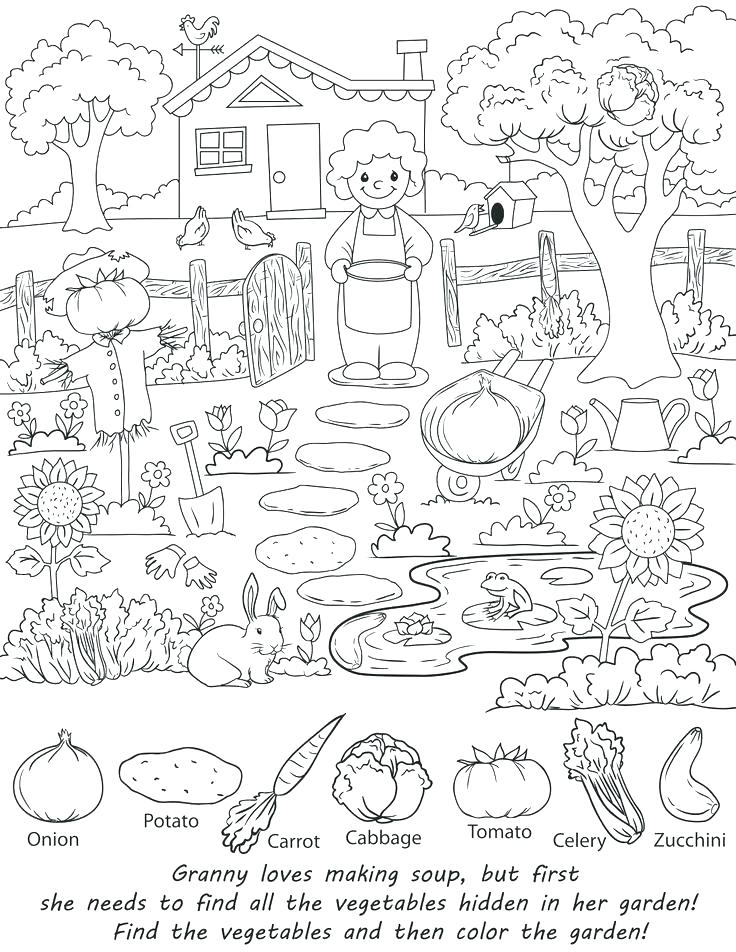 736x952 Hidden Pictures Coloring Pages Images About Beautiful Hidden