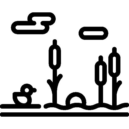 Dock Icon