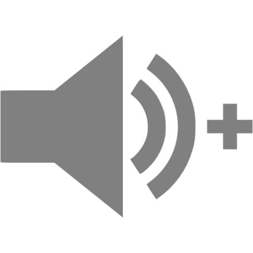 Gray Audio Add Icon