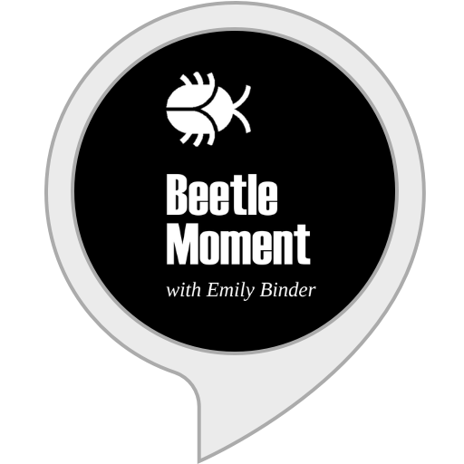 Happy Hour Specials Beetle Moment Marketing