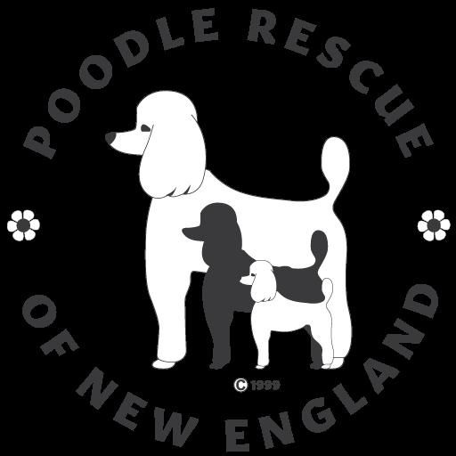Amazon Smile Poodle Rescue Of New England