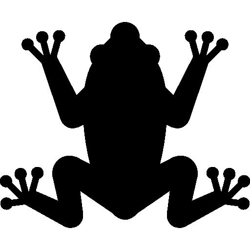 Toad, Animal, Hypnotoad, Frog Icon