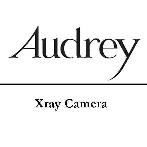 Body Scanner Download