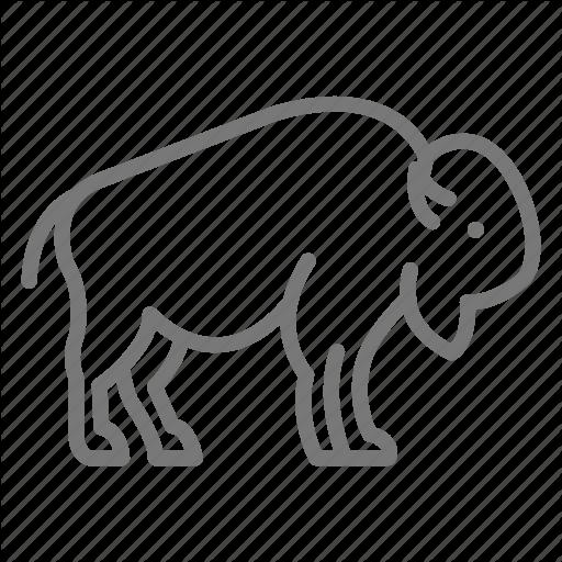 Animal, Bison, Buffalo, Fur, Herd Icon