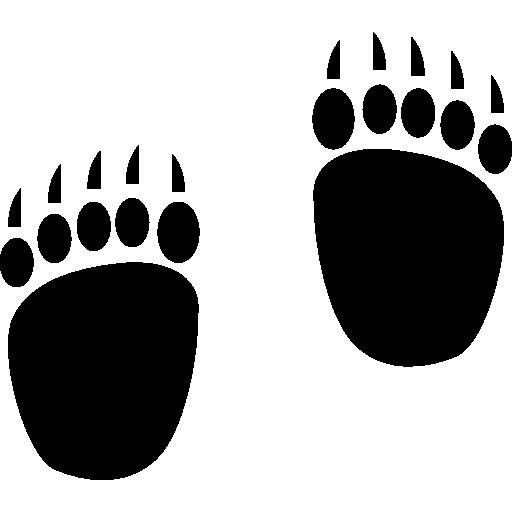 Bear Footprints Icons Free Download