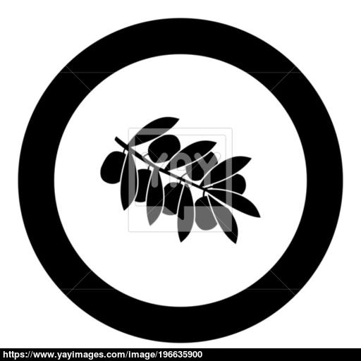 Olive Branch Black Icon In Circle Vector Illustration Vector