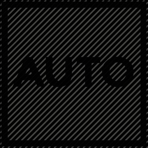 Auto Sign, Automatic, Digital, Flash Auto, Image Auto, Picture