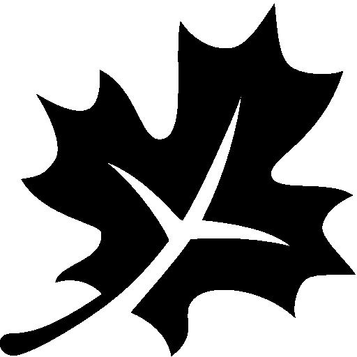 Astrology Autumn Icon Windows Iconset