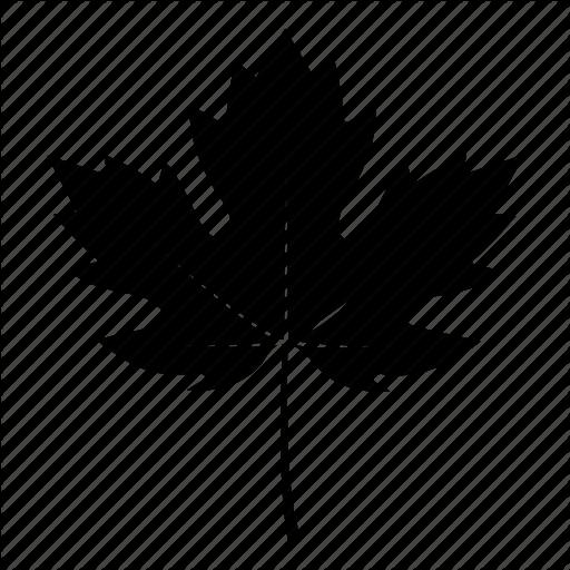Autumn, Canada, Fall, Leaf, Maple, Sycamore, Tree Icon