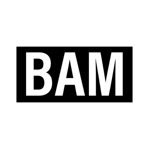 Bam Enterprises, Inc