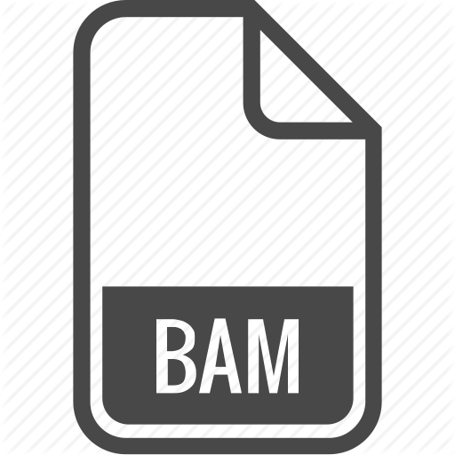 Bam, Document, File, Format, Type Icon