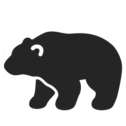 Bear Icon Iconexperience