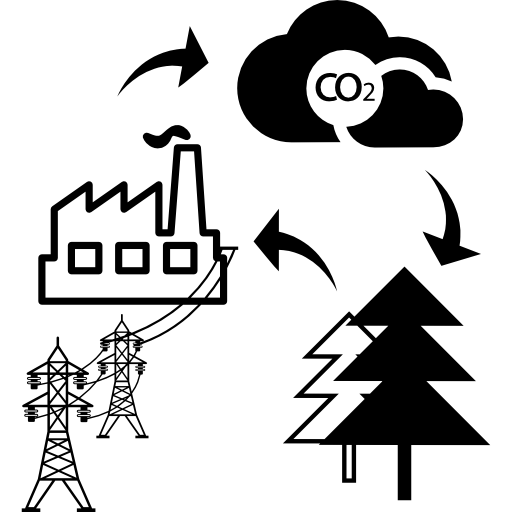 Cycle Sketch Of Bio Mass Into Energy Icons Free Download