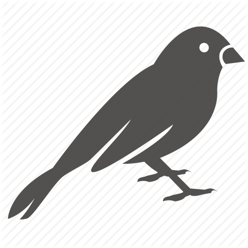 Bird, Canary, Finch, Pet, Sparrow Icon