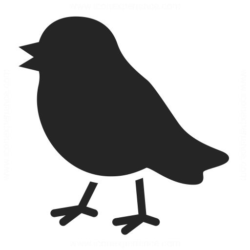 Bird Icon Iconexperience