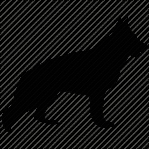 Dog, Investigation, Police Dog, Purebred Dog, Shepherd Dog