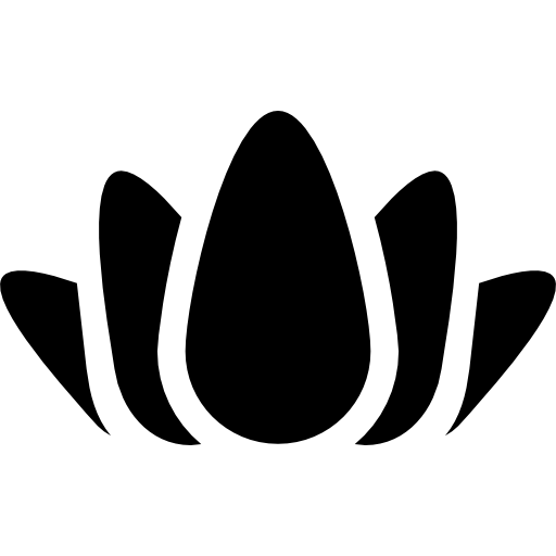 Lotus Bud Open