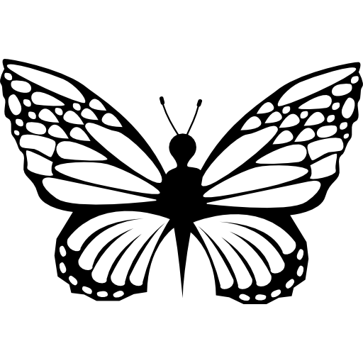 Delicacy Of Butterfly Shapes