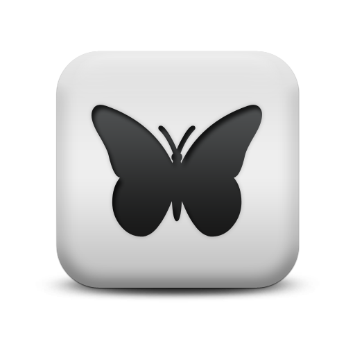 Icon Image Butterfly Free
