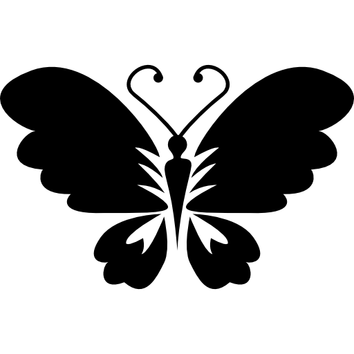 Black Butterfly Top View With Opened Wings Icons Free Download
