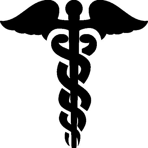 Healthcare Caduceus Icon Windows Iconset