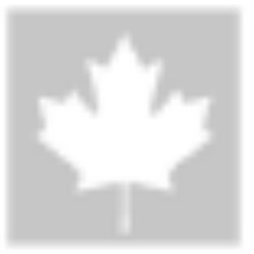 Cropped Canada Flag Grey Icon Underweb Publishing