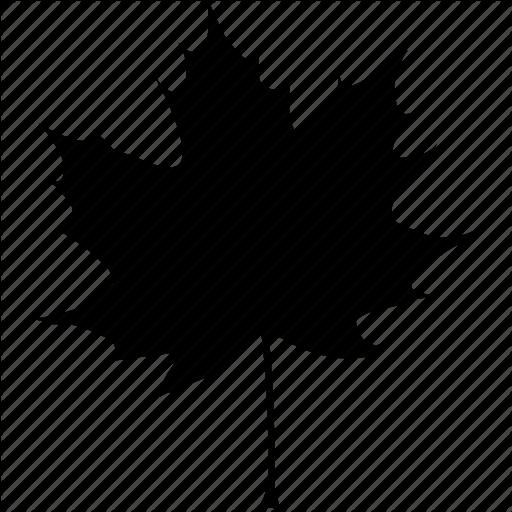 Black, Autumn, Canada, Canadian, Fall, Leaf, Maple, Tree Icon