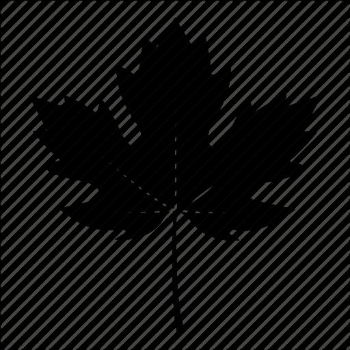 Black Fall Leaves Icon