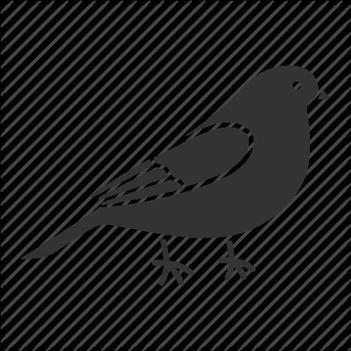 Animal, Bird, Canary, Ornithology, Perrot, Pet, Songbird Icon