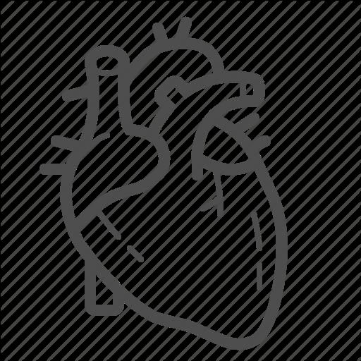 Cardio, Cardiology, Cardiovascular, Health, Healthcare, Heart