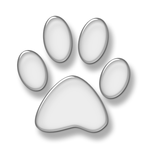 Cat Print Animal Png