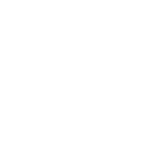 Download Icon White