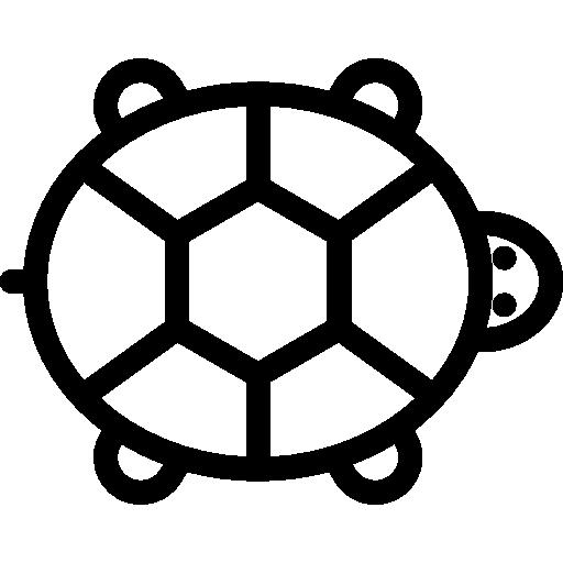 Reptile, Wildlife, Animal Kingdom, Zoo, Animals, Chameleon Icon