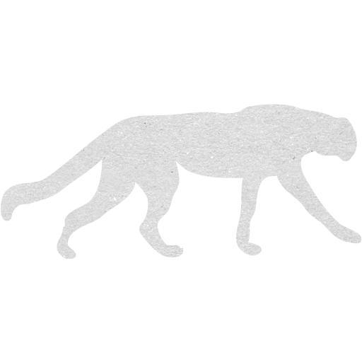 Cardboard Cheetah Icon